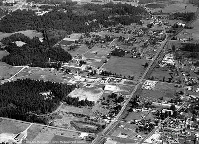 Photograph - Aerial Over City Of Lacey #2 by Merle Junk