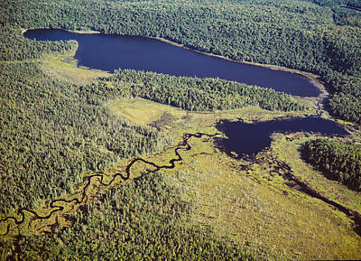 Algonquin Provincial Park Photograph - Aerial View Of A Lake, Algonquin by Panoramic Images