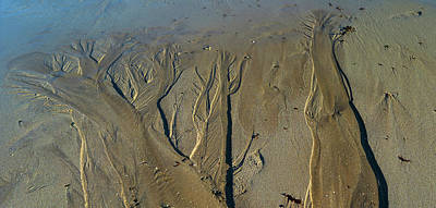 Photograph - Aerial View Of Beach, Mount Desert by Panoramic Images