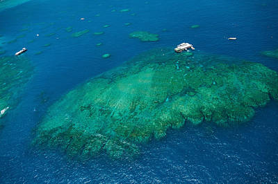 Aerial View Of Coral Reef Art Print by Panoramic Images