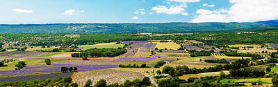 Aerial View Of Fields Art Print by Panoramic Images