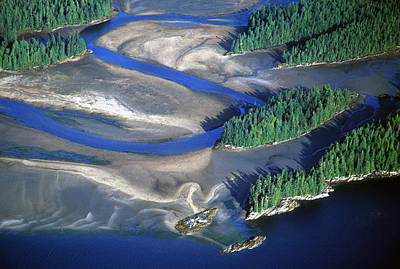 Behm Photograph - Aerial View Of Manzanita River Delta At by Chip Porter