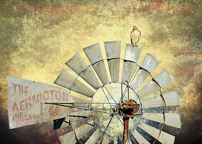 Red Tail Hawk Digital Art - Aermotor And Red-tail II by Daniel Lee Brown