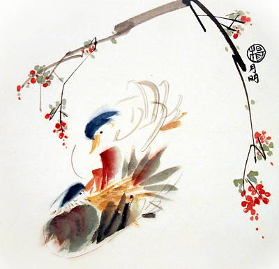 Mandarin Painting - Affectionate by Ming Yeung