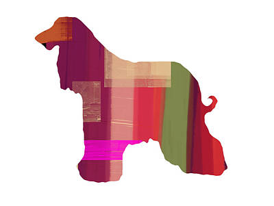 Colorful Art Mixed Media - Afghan Hound 2 by Naxart Studio