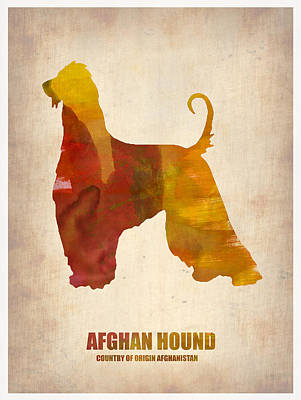 Cute Dog Digital Art - Afghan Hound Poster by Naxart Studio