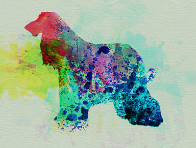 Puppy Mixed Media - Afghan Hound Watercolor by Naxart Studio