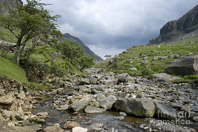 Photograph - Afon Nant Peris by Doug Wilton