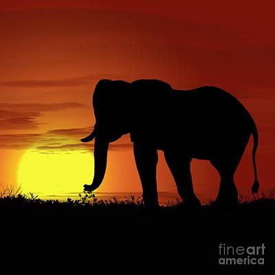 Golden Leopard Digital Art - Africa Elephant Sunset by Ludek Sagi Lukac