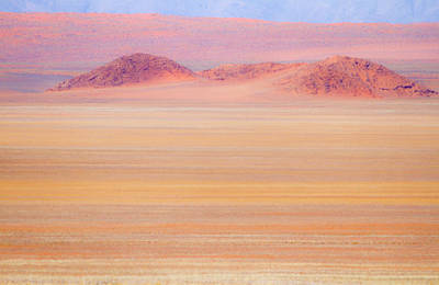 Distortion Photograph - Africa, Namibia Heat Distorts Grassy by Jaynes Gallery