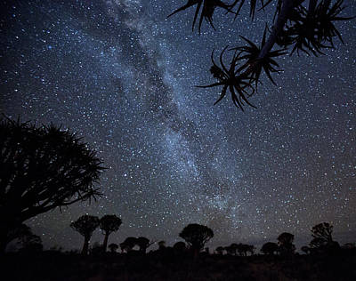Africa, Namibia Milky Way And Quiver Art Print