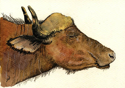 African Buffalo Head Original by Juan  Bosco