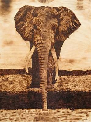African Elephant  Original by Iliev Petkov