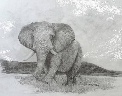 African Elephant Art Print by Jim Hubbard