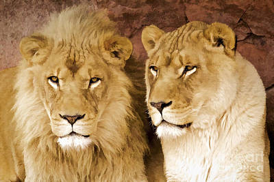 Digital Art - African Lions by Mike Mulick