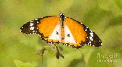 Butterfly Digital Art - African Monarch Or Plain Tiger Butterfly Danaus Chrysippus by Liz Leyden