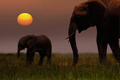 African Mother Elephant And Baby - Art Print by 1001slide