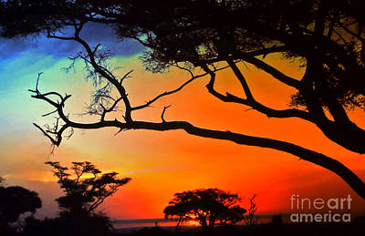 African Skies Art Print by Lydia Holly