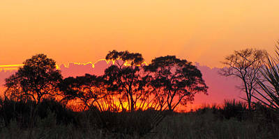 Photograph - African Sunrise by Karen E Phillips