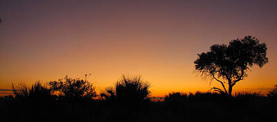 Photograph - African Sunset by Karen E Phillips