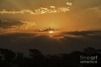 Photograph - African Sunset by Kati Tomlinson