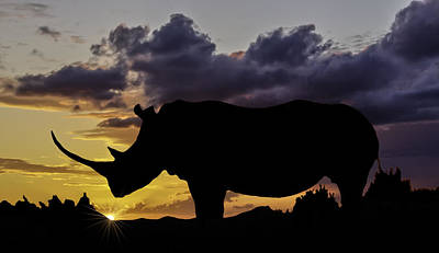 Photograph - African Sunset by Maria Coulson