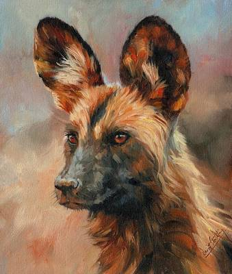 Animals Paintings - African Wild Dog by David Stribbling