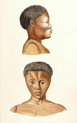 African Woman Print by King's College London