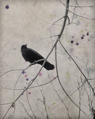 Blackbird Mixed Media - After All by Gothicrow Images