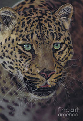Pastel - After Dark All Cats Are Leopards by Karie-Ann Cooper