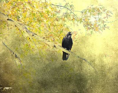 After September Art Print by Gothicrow Images
