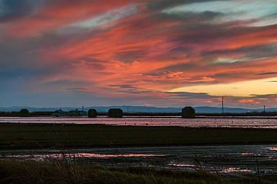 Photograph - After The Harvest. Albufera Lagoon by Juan Carlos Ferro Duque