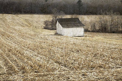 Photograph - After The Harvest by John Stephens