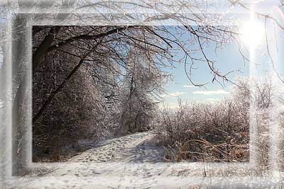 Photograph - After The Ice Storm by Davandra Cribbie