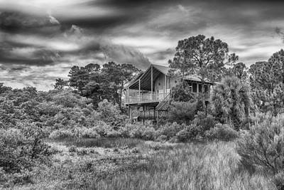 Photograph - After The Rain - Life In Cedar Key by Howard Salmon