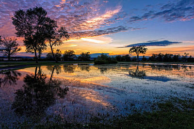 Floods Photograph - After The Rains by Mary Amerman