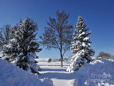 Photograph - After The Snow by Graham Taylor