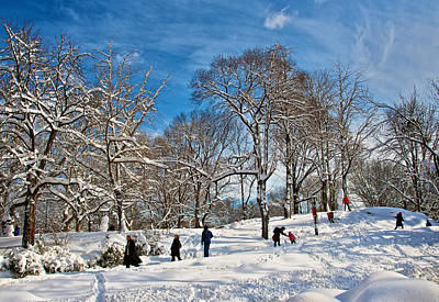 Photograph - After The Snow Storm by Steven Mancinelli