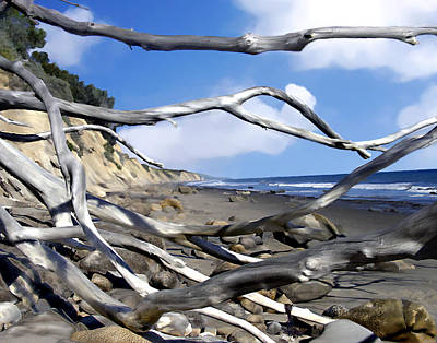 Photograph - After The Storm Gaviota by Kurt Van Wagner
