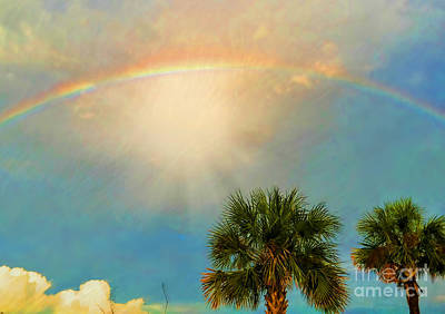 Photograph - After The Storm by Kathy Baccari