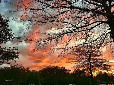 Photograph - After The Storm Passed by Paulette B Wright