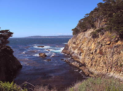 Photograph - Afternoon At Point Lobos by Derek Dean