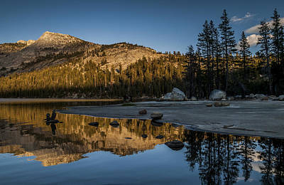 Yosemite California Photograph - Afternoon Glow by Cat Connor