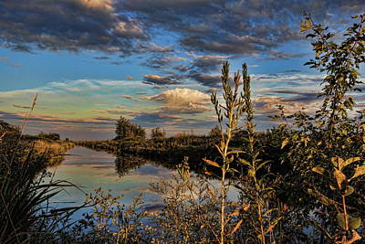 Photograph - Late Afternoon In The Mead Wildlife Area by Dale Kauzlaric