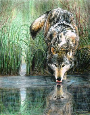 Painting - Afternoon Reflection by Carla Kurt