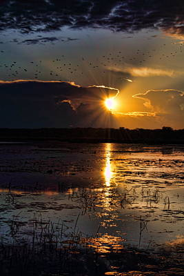 Photograph - Late Afternoon Reflection by Dale Kauzlaric
