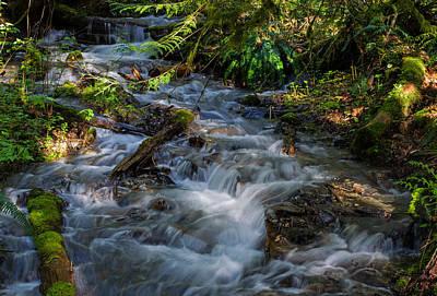 Photograph - Afternoon Refreshment - Bridal Veil Falls Provincial Park by Jordan Blackstone