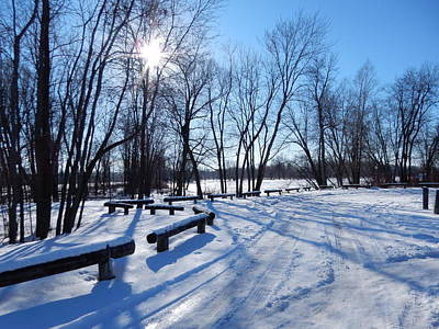 Petrie Island Photograph - Afternoon Sun by Betty-Anne McDonald