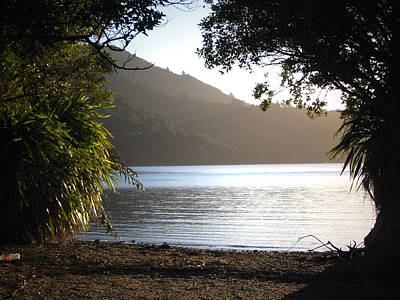 Photograph - Afternoon Sun In Marlborough Sounds Nz by Amber Nissen