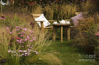 Yarrow Photograph - Afternoon Tea by Anne Gilbert